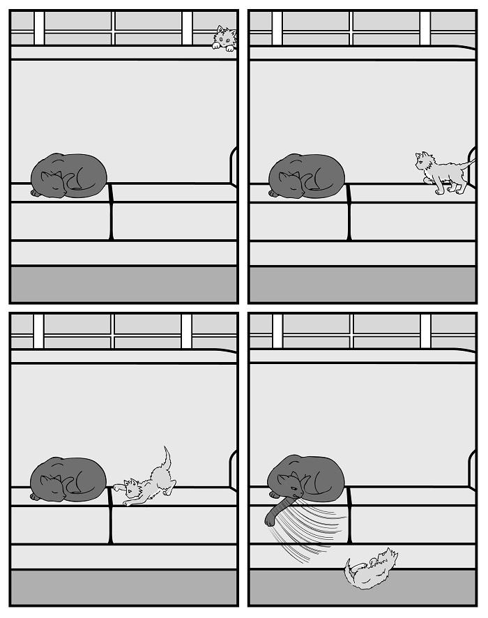 Kitten Part 8