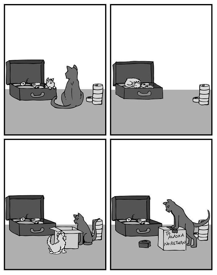 Kitten Part 12